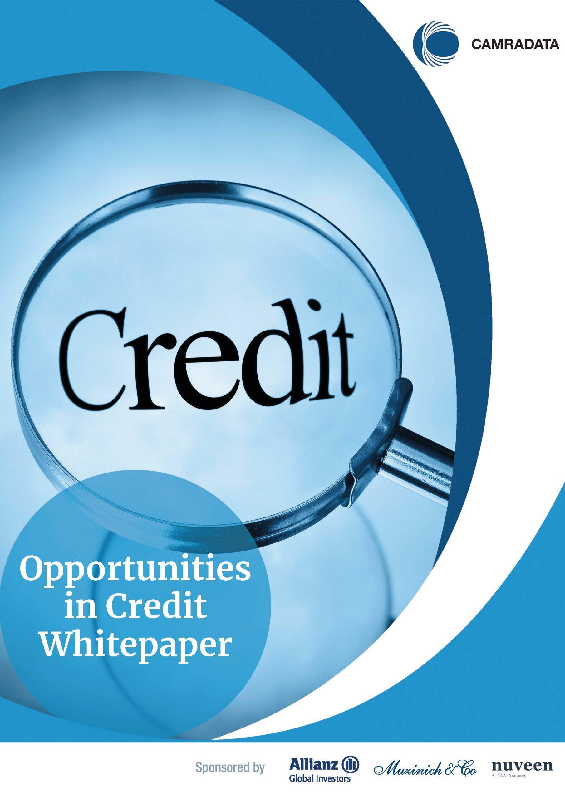 Opportunities in Credit